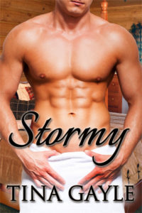 cover of Stormy