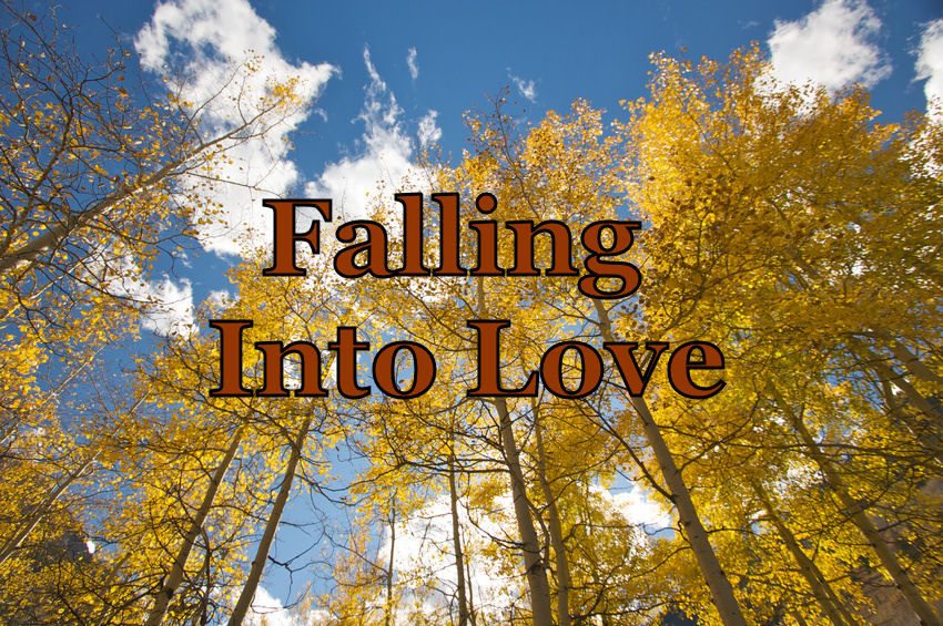 falling into love button